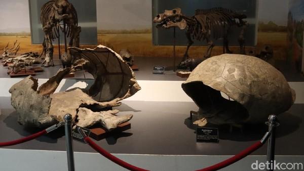 Jika QR Code itu sudah keluar, maka Museum Geologi sudah dapat menerima kunjungan kembali.