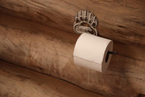Barang lain yang bisa dibawa saat check out dari hotel adalah tissue toilet. Namun ada juga hotel yang melarang tamunya membawa tissue toilet, jadi pastikan dulu dengan hotelnya ya. (iStock)
