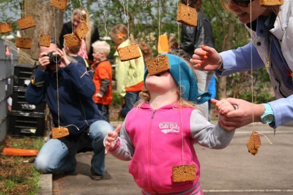 Permainan Gigit Kue hingga Bawa Telur di Belanda Ini Mirip Seperti di Indonesia