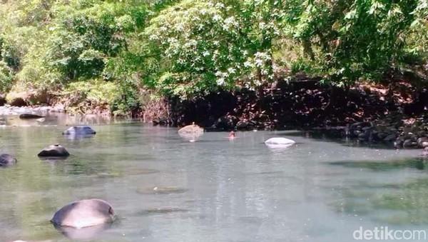 Dua sungai aliran Gunung Lawu bertemu di Alas Ketonggo, yakni sungai Ketonggo dan sungai Cangmalang. Untuk menuju sungai ini pengunjung berjalan sekitar 300 meter dari gerbang utama masuk Palereman Alas Ketonggo Srigati.