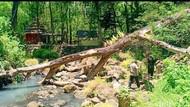 Sungai Tempuk Jadi Tempat Ritual Favorit Pengunjung di Alas Ketonggo Ngawi