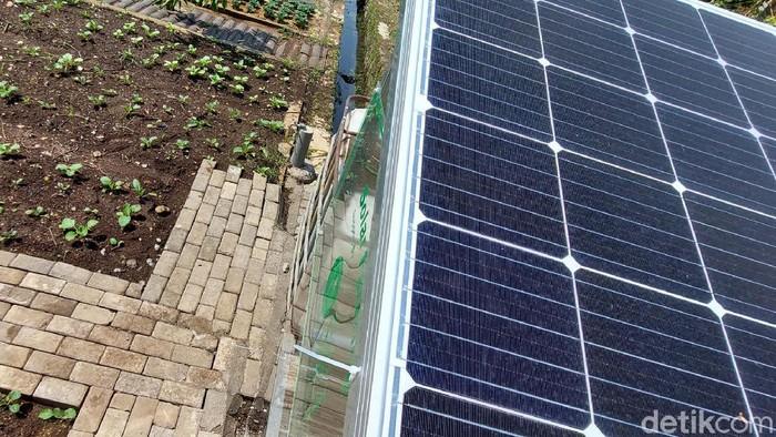 Urban farming di Buaruan Sehat Alami Ekonomis (SAE) P2L Riyadhul Jannah, Kota Bandung, ini menggunakan beragam teknologi. Termasuk solar cell untuk energi listriknya.