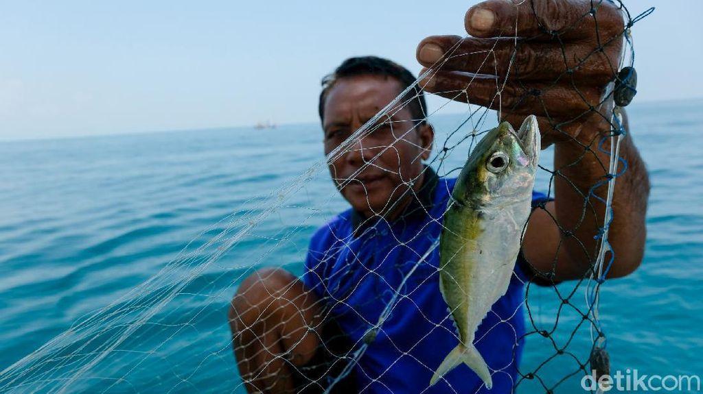 Percaya Nggak Percaya, Nelayan di Kendal Bisa Dengar Suara Ikan