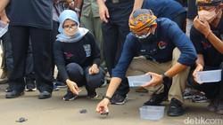 Sandiaga Berdayakan Masyarakat Melalui Konservasi Penyu di Pantai Serang