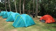 Spot Ngadem dan Ijo Royo-royo di Kudus, Pijar Park