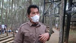 Mengenal Sosok di Balik Hutan Pinus Mangunan Jogja yang Populer