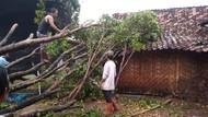 Puluhan Rumah Rusak dan Roboh Dampak Hujan di Madiun, 5 Warga Luka