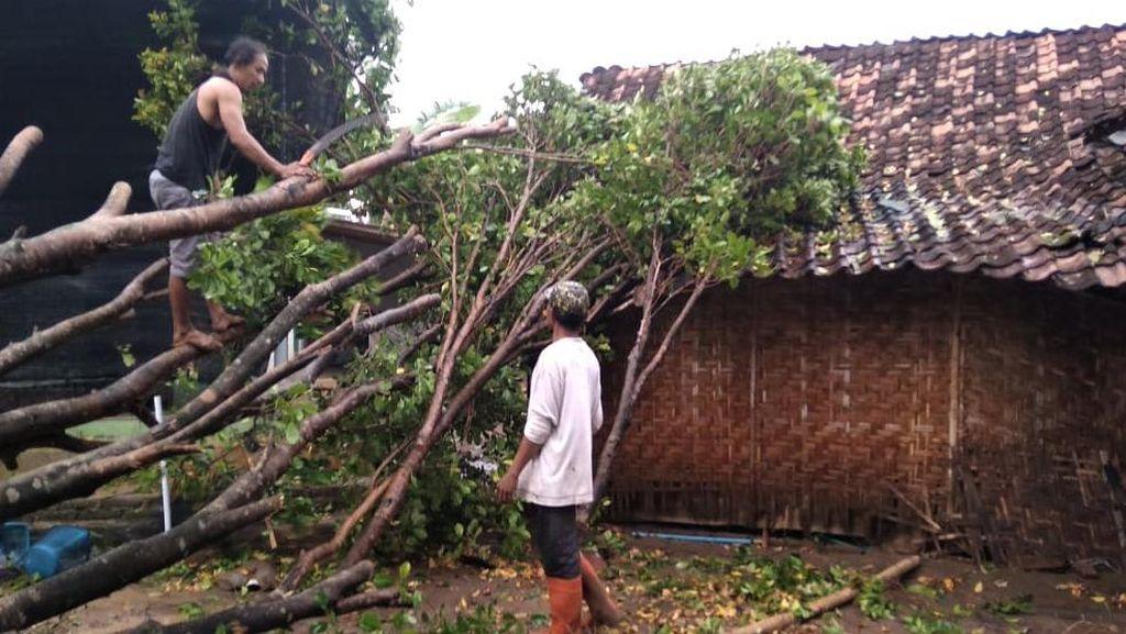 Rumah Rusak-Pohon Tumbang Imbas Hujan Es di Madiun