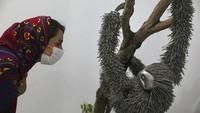 Bukan Hewan Asli, Ini Penghuni Kebun Binatang Unik di Iran