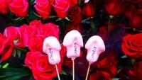 Festival Penis nan Sakral di Jepang dan Kedai Kopi degan View Menawan di Bogor