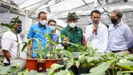 Menkop Dorong Koperasi Garap Pasar Tanaman Hias Dunia Rp 3.000 T