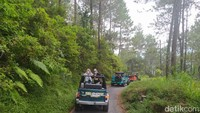 Tur Sehari di Kabupaten Magelang, Bisa Jelajah di Lereng Merapi-Merbabu-Telomoyo