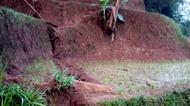 Tanah Retak di Purabaya Sukabumi, Warga Was-was Bukit Cigulusur Longsor