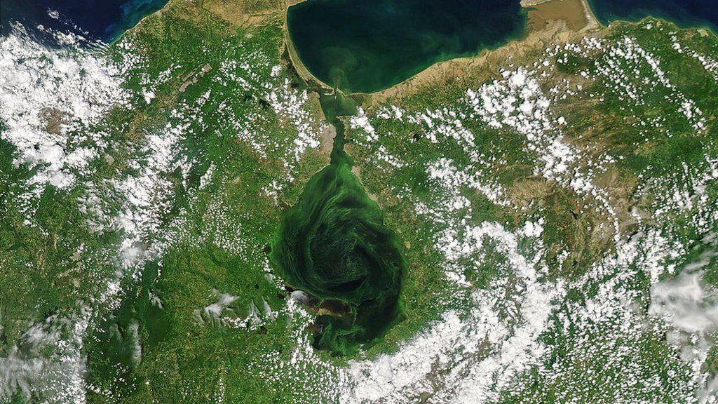Air Danau di Venezuela Berubah Jadi Hijau, Apa Sebabnya?