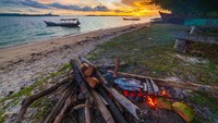 Ada Anjing Ditangkap dan Mati di Pulau Banyak, #Aceh Gaduh di Twitter