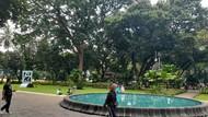 Senangnya Warga Bisa Olahraga-Bersantai di Taman Suropati yang Dibuka Lagi