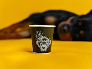 Begini Cozynya Kafe Khusus Anjing, The Barking Lot di Khobar, Arab Saudi