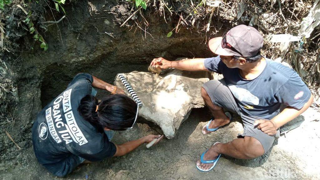 Fosil Hewan Purba Ratusan Ribu Tahun Ditemukan di Blora