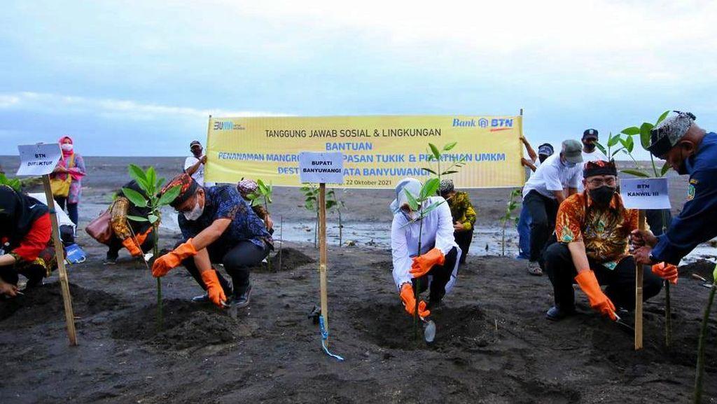 Pantai Cemara Bersolek Menuju Banyuwangi Rebound