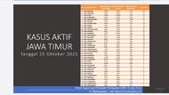 Kasus Aktif COVID-19 di Jatim 527, Malang Tertinggi-Kota Mojokerto Terendah