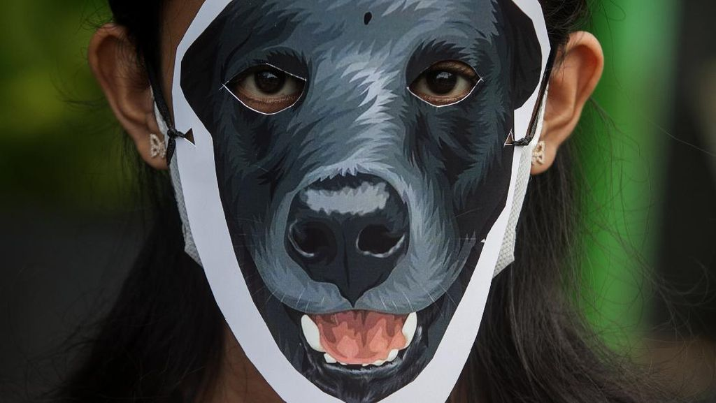 Aksi Solidaritas untuk Anjing Canon di Solo