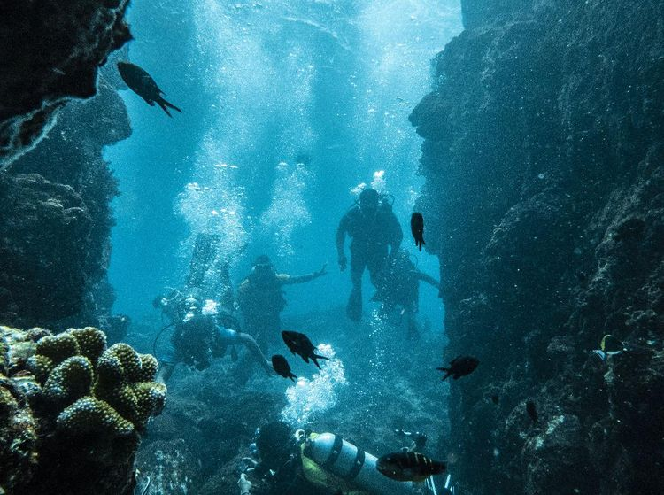 Menyusuri Keindahan Bawah Laut Pulau Sabang