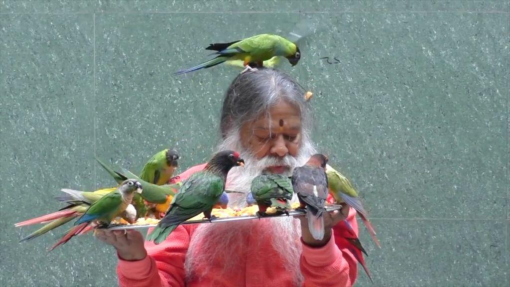 Pria Ini Baktikan Hidupnya untuk Menyelamatkan Burung