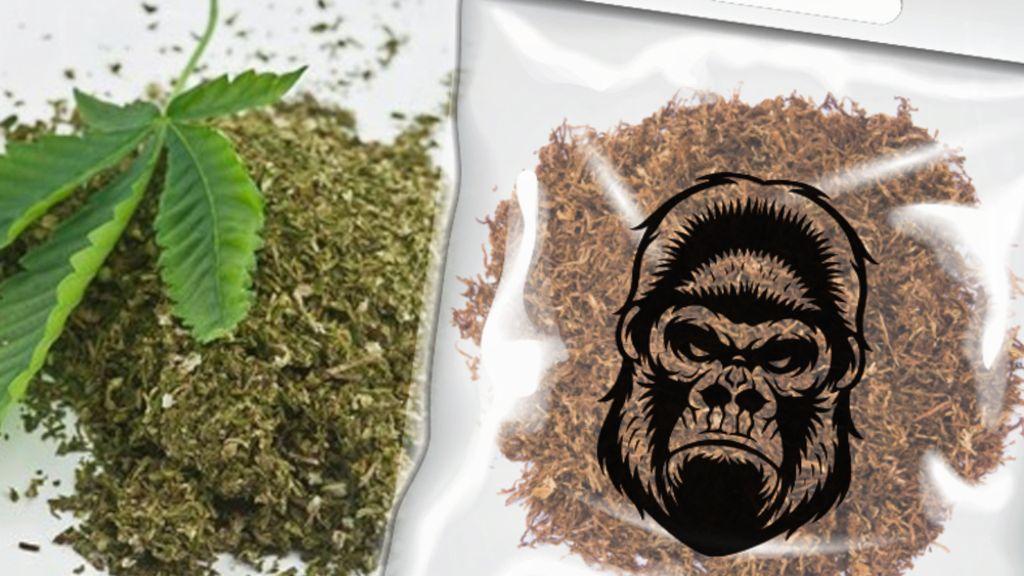 Bahaya Tembakau Gorila yang Diduga Diisap Eks Pilot Citilink