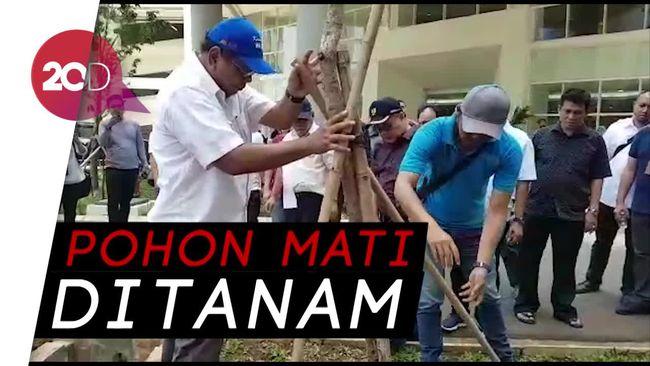 Pemprov DKI Tanam BANGKAI Pohon di Wisma Atlet, Menteri PUPR Geleng-Geleng Kepala Terpaksa Lakukan Ini