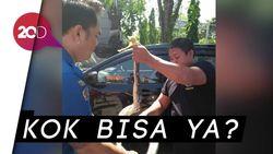 Kejadian di Bali, Ular Sanca 2,5 Meter Sembunyi di Mesin Mobil