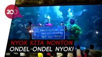HUT Jakarta, SeaWorld Hadirkan Ondel-ondel Joget di Bawah Air