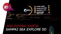Jelajahi Dunia Bawah Laut di Jakarta Aquarium