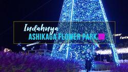 Indahnya Taman Bunga Ashikaga di Jepang