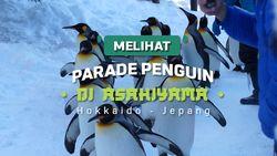 Melihat Parade Penguin di Asahiyama Zoo Hokkaido