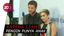 Miley Cyrus dan Liam Dikabarkan Gagal Nikah Lagi, Kenapa?