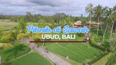 Sensasi Piknik Di Sawah Ubud, Bali
