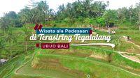 Jalan Jalan Menyusuri Keunikan Sawah di Ubud
