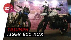 Motor Adventure Triumph Teranyar Siap Mengaspal di Indonesia