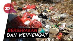 Dear Pak Anies... Warga Cilincing Keluhkan Tumpukan Sampah!