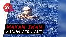 Cara Aldi Life of Pi Bertahan Hidup 49 Hari di Lautan
