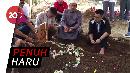 Isak Tangis Keluarga dan Kerabat Iringi Pemakaman Rudy Wowor