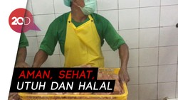 Ayam ASUH, Kiat Pemprov DKI Jakarta Cegah Flu Burung