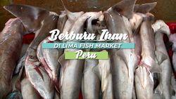 Pasar Ikan Terbesar Kedua di Dunia