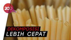 Sedotan dari Serat Tanaman Jadi Inovasi Kurangi Pencemaran Plastik