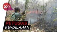 Tiga Hektar Hutan Bukit Bentar Probolinggo Terbakar