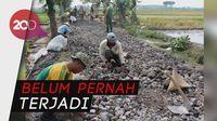 Mendes: Pertama Dalam Sejarah, Indonesia Bangun Jalan Desa 158.691 km