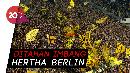 Kemenangan Beruntun Dortmund Berakhir