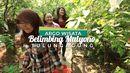Yuk, Ajak Keluarga ke Agrowisata Belimbing Mulyono di Tulungagung