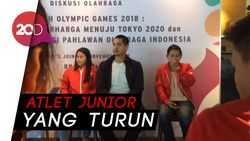 Atlet Senior Indonesia Bakal Absen di SEA Games 2019
