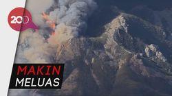 Penampakan dari Udara Kebakaran Hutan di California